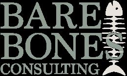 Bare Bones Consulting